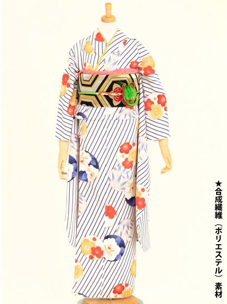 白地に紺のななめ縞に梅と椿の丸紋の振袖