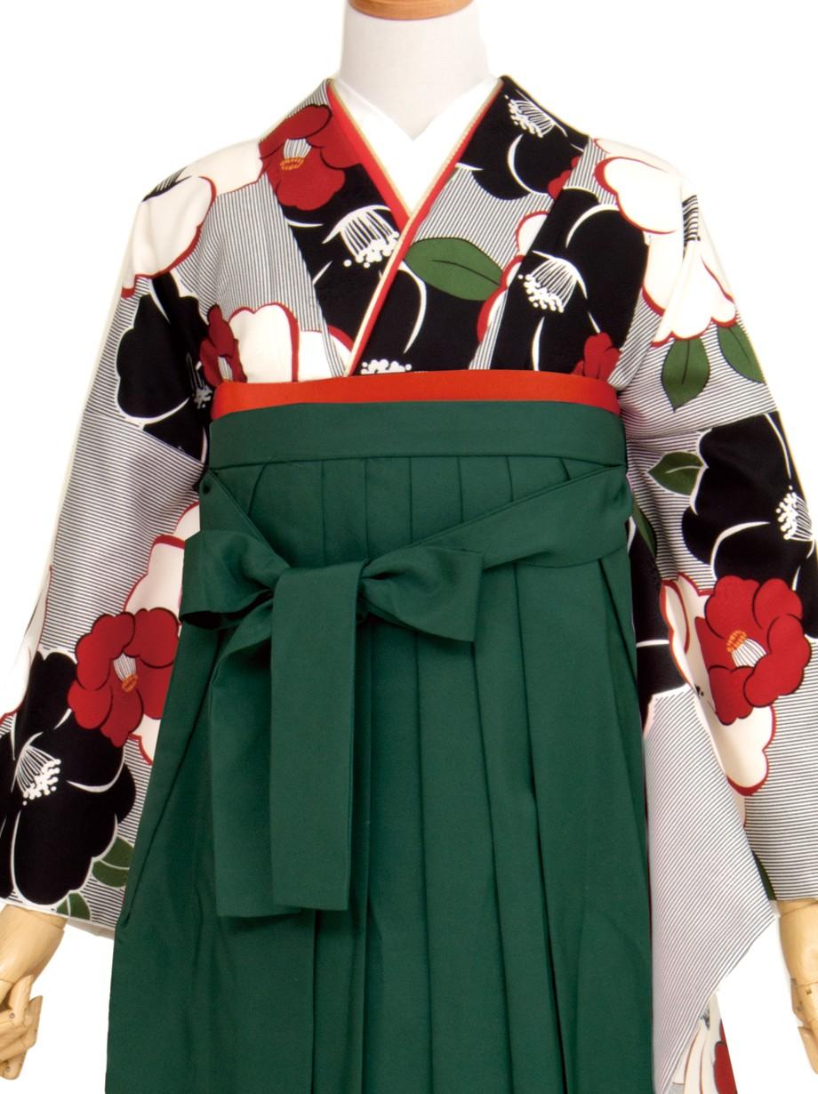 白地に黒の万筋に椿・緑袴(二尺袖)/卒業式
