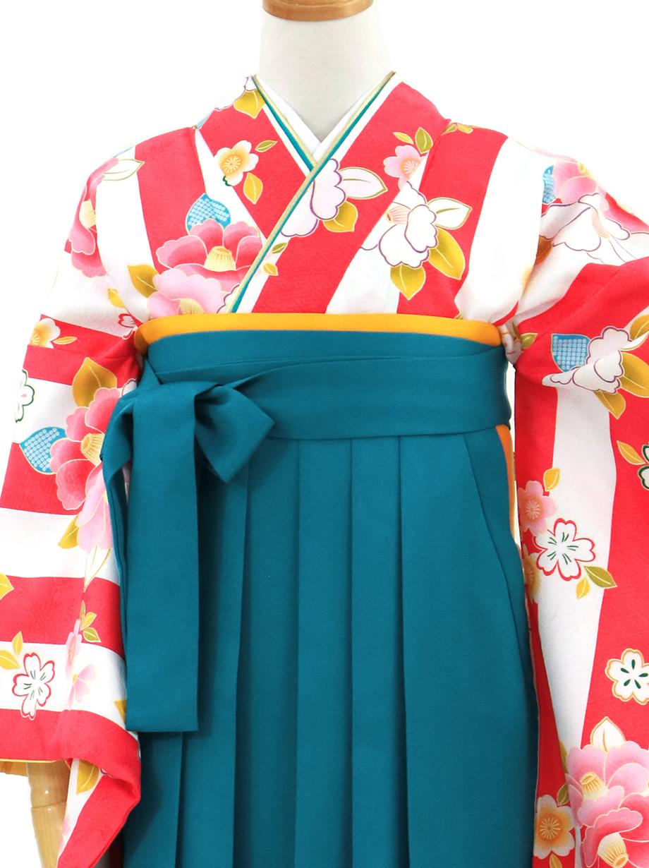 ピンクと白の縦縞に椿・青袴(無地)(二尺袖)/卒業式