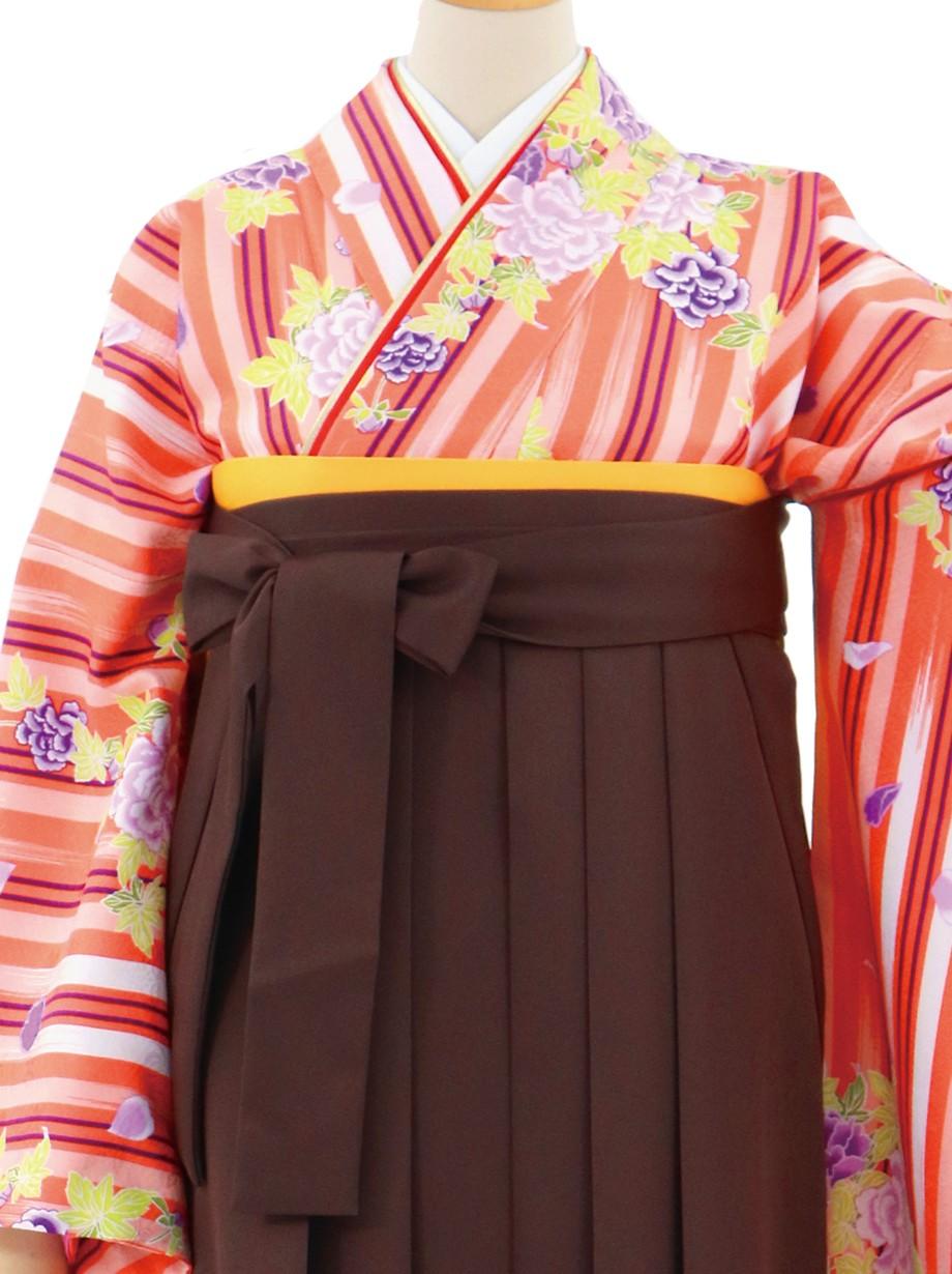 オレンジの縞に牡丹・茶色袴(無地)(二尺袖)/卒業式