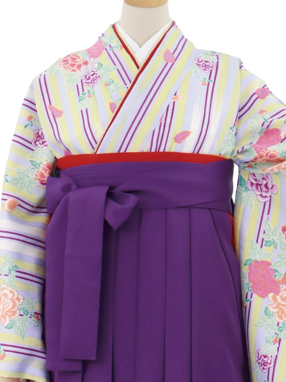 薄紫の縞に牡丹・本紫袴(無地)(二尺袖)/卒業式