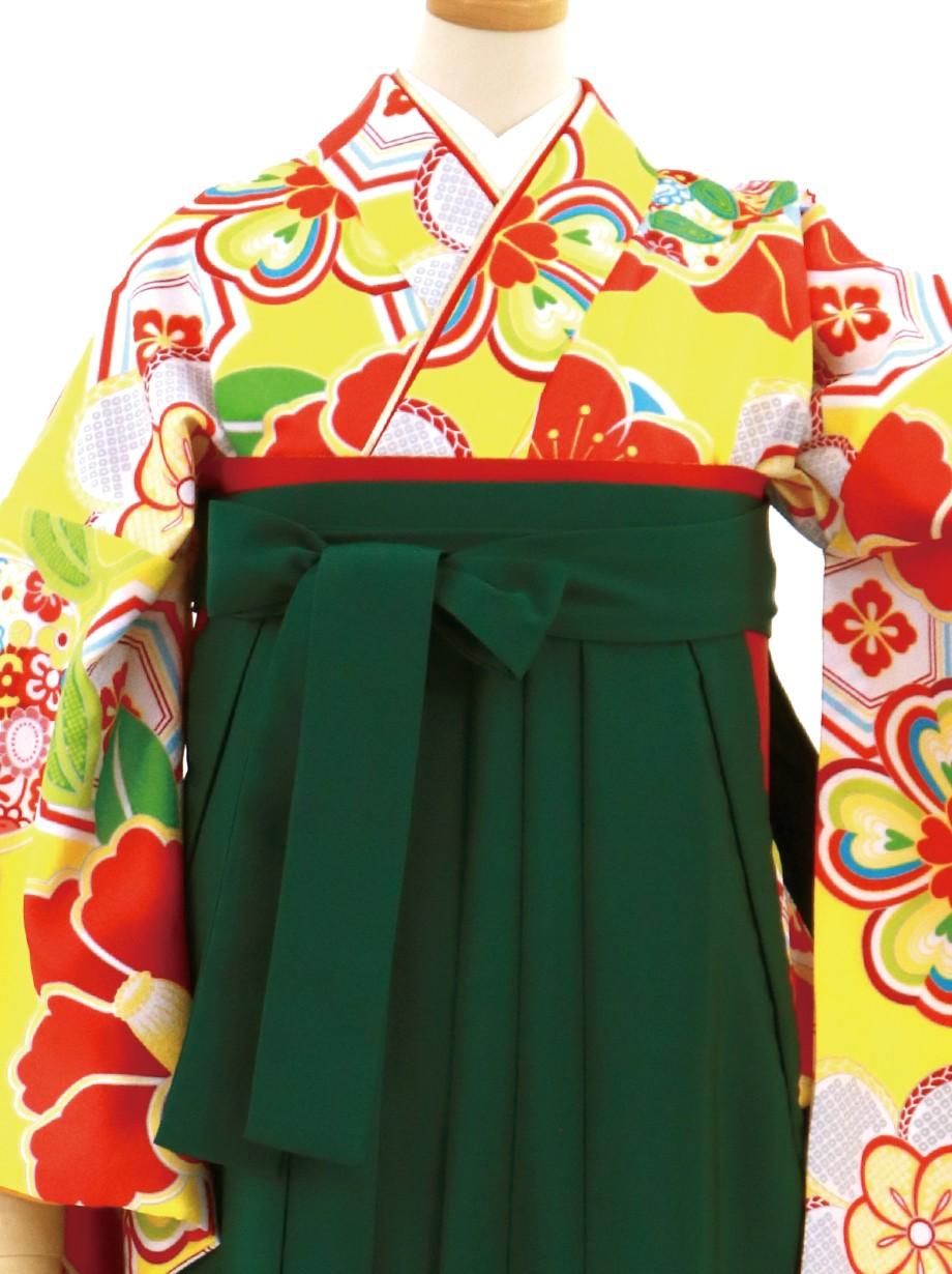 黄色地に梅文・緑袴(無地)(二尺袖)/卒業式