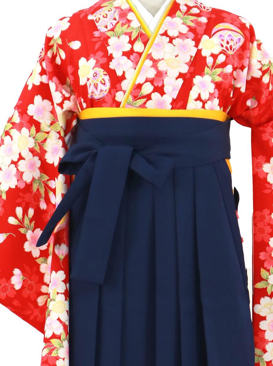 赤地に桜づくしと鞠、紺袴(無地)(二尺袖)/卒業式