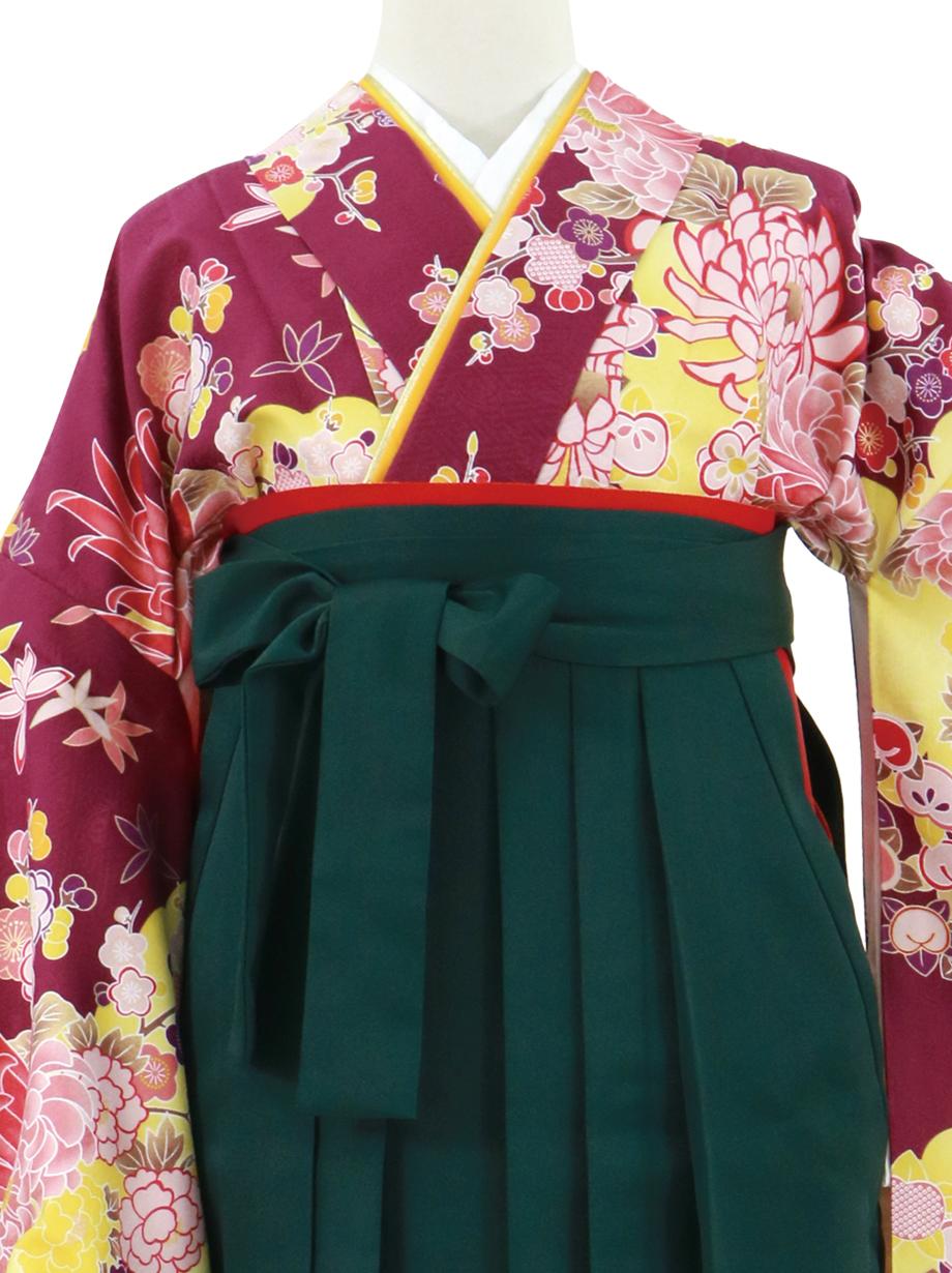 紫地に菊と雲取り、深緑袴(無地)(二尺袖)/卒業式