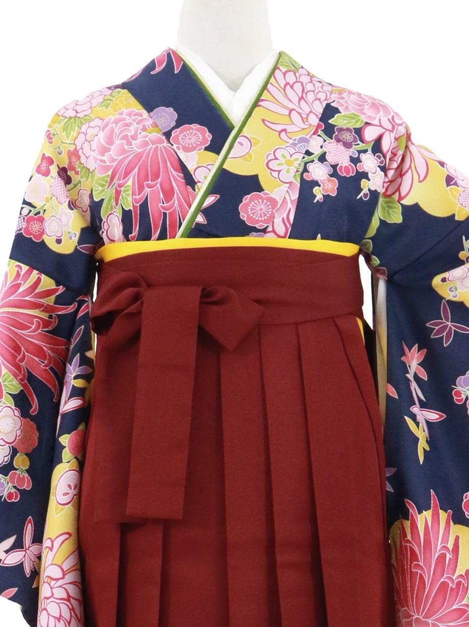 紺地に菊と雲取り、臙脂袴(無地)(二尺袖)/卒業式