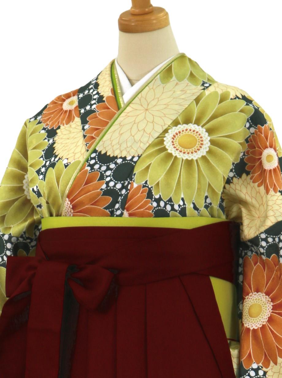 緑色地に菊とガーベラ・臙脂袴(無地)(二尺袖)/卒業式
