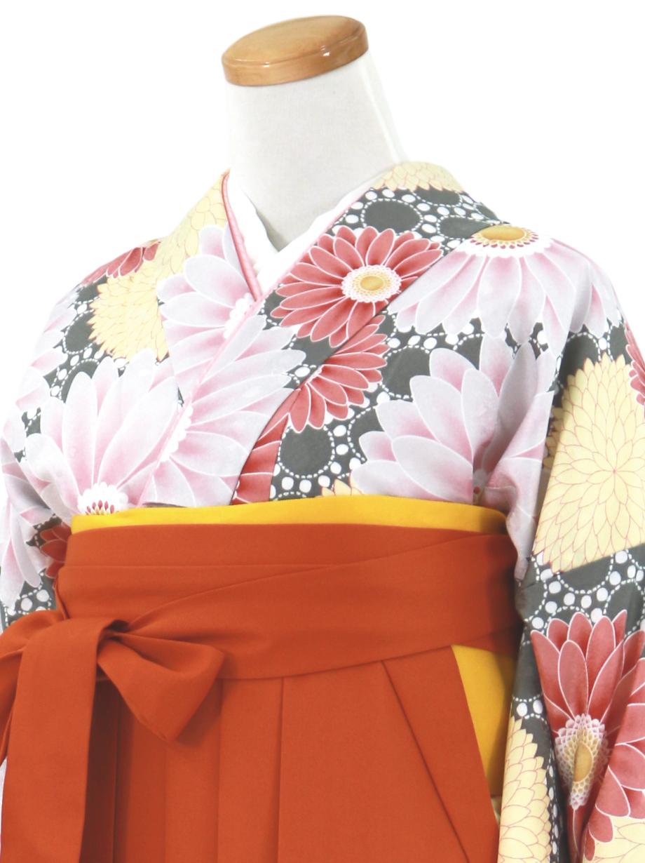 グレー地に菊とガーベラ・オレンジ袴(無地)(二尺袖)/卒業式
