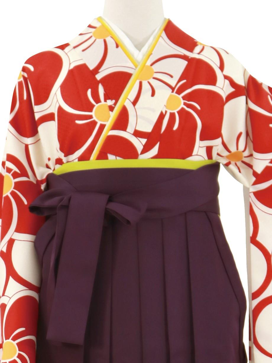 赤と白のねじ梅、紫袴(無地)(二尺袖)/卒業式