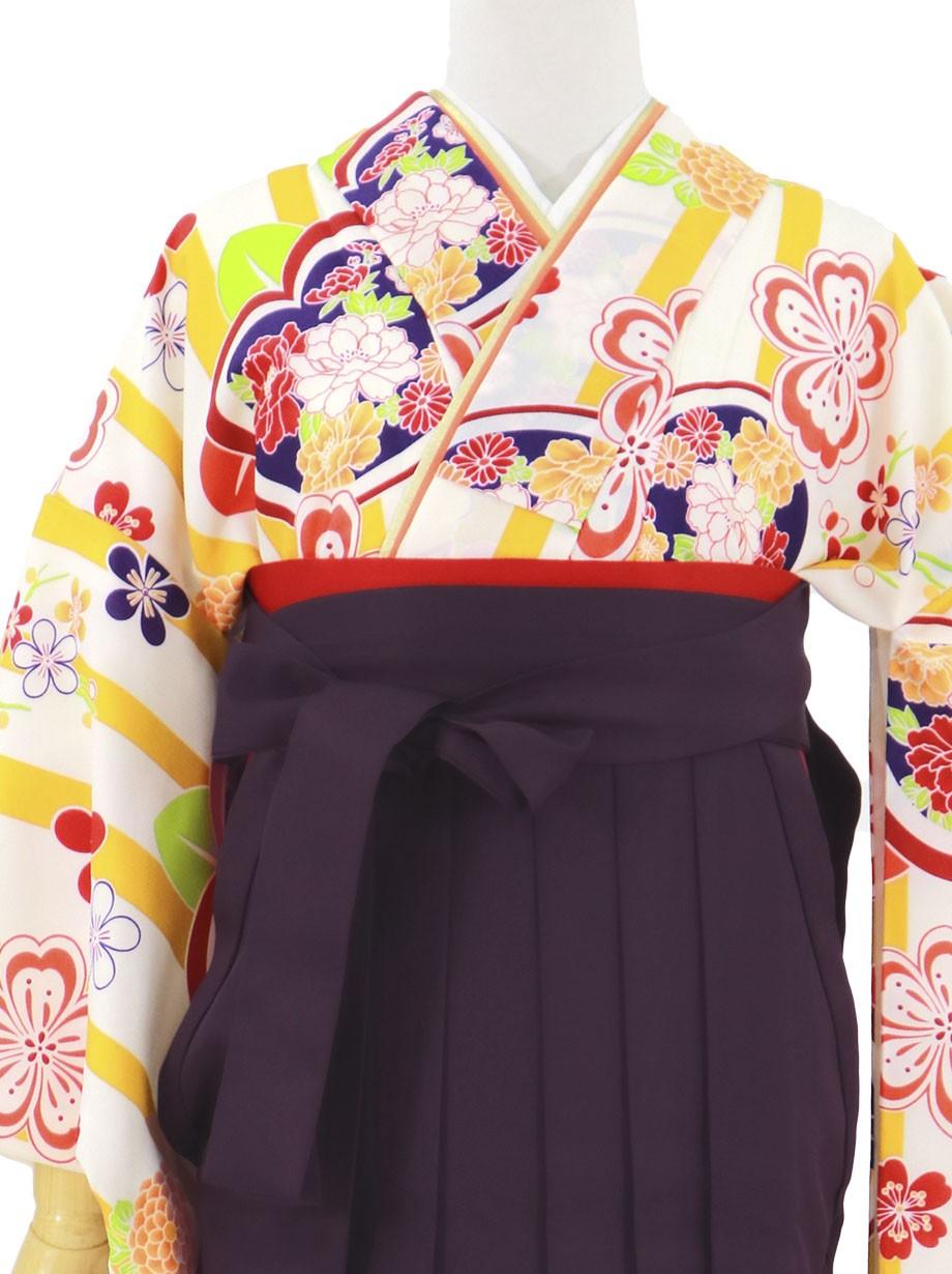 黄色と白のストライプに橘、紫袴(無地)(二尺袖)/卒業式