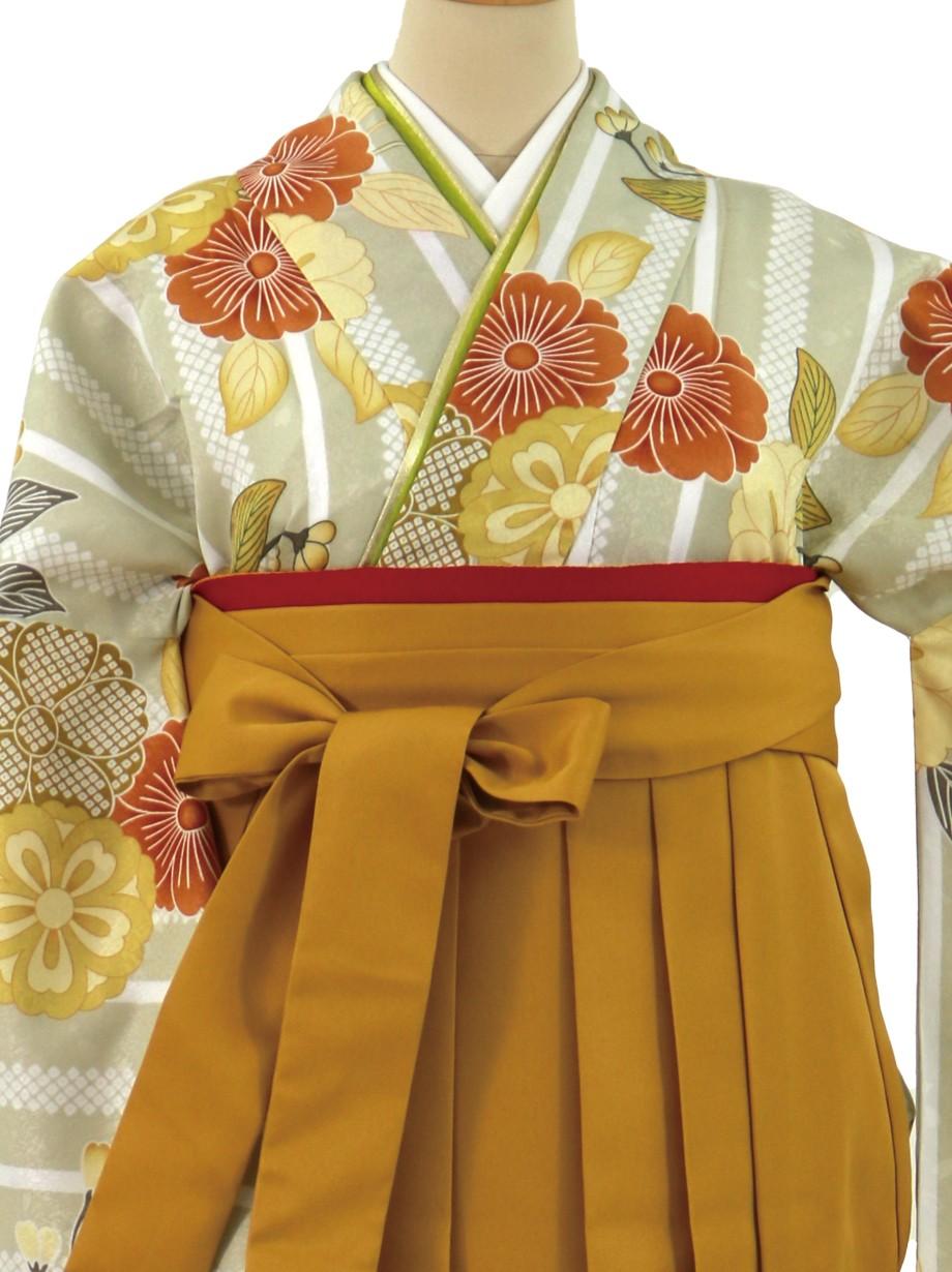 薄柳茶色にストライプと桜、マスタード袴(無地)(二尺袖)/卒業式