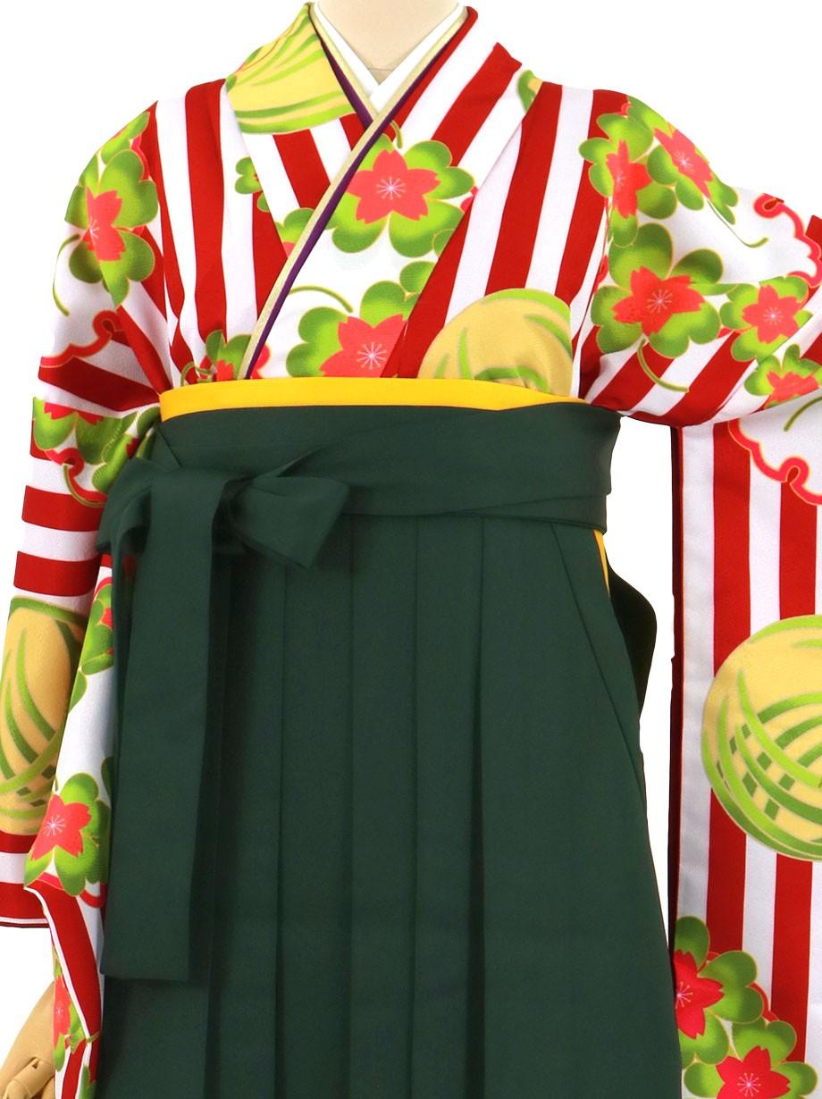 赤と白のストライプに桜とクローバー、深緑袴(無地)(二尺袖)/卒業式