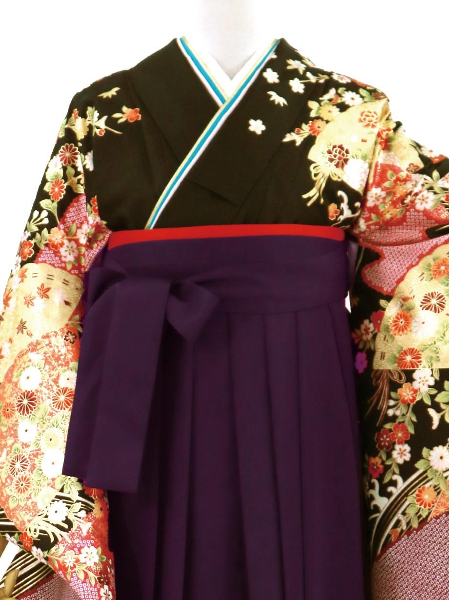 黒地に扇・紫袴(無地)(二尺袖)/卒業式
