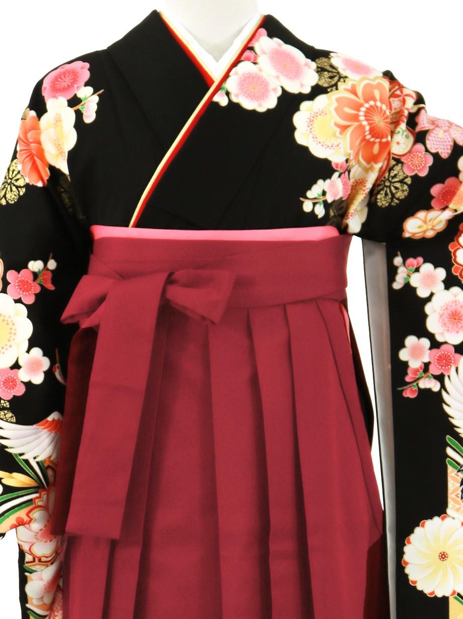 黒地に鶴と桜、臙脂袴(無地)(二尺袖)/卒業式