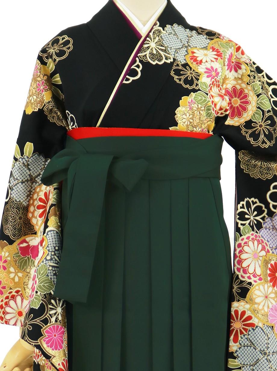 黒地に菊と桜、深緑袴(無地)(二尺袖)/卒業式