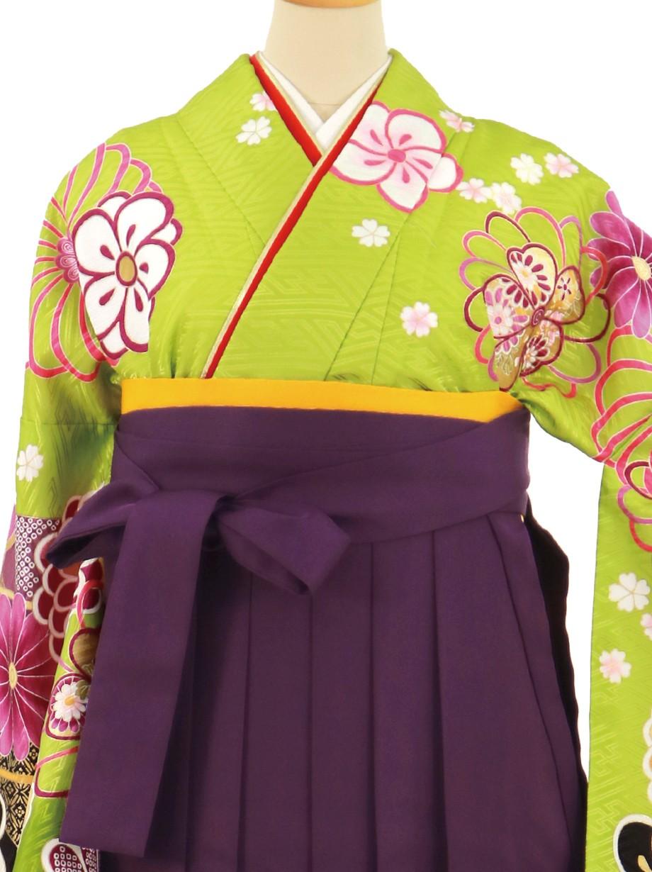 鶸色地に桜と矢絣、紫袴(無地)(二尺袖)/卒業式