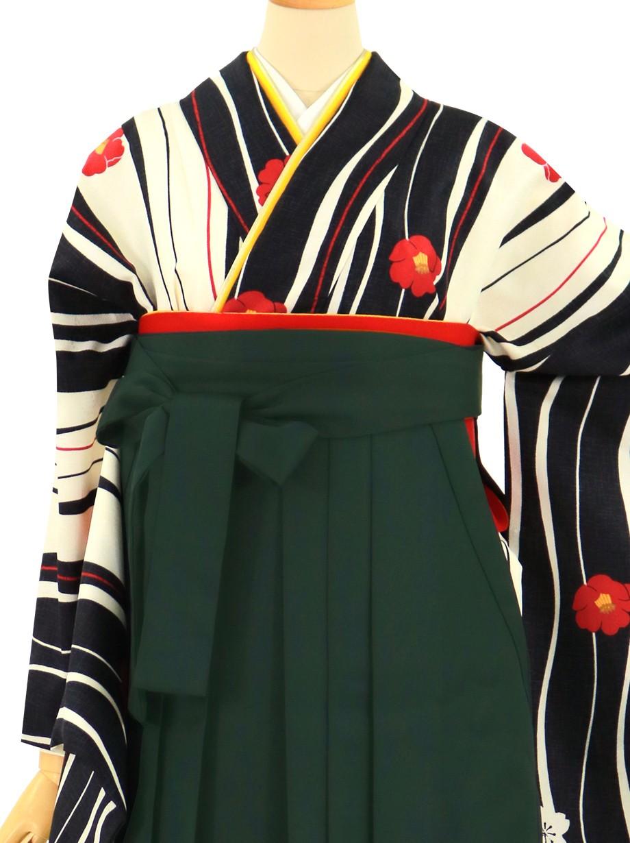 白地によろけ縞と椿、深緑袴(無地)(二尺袖)/卒業式