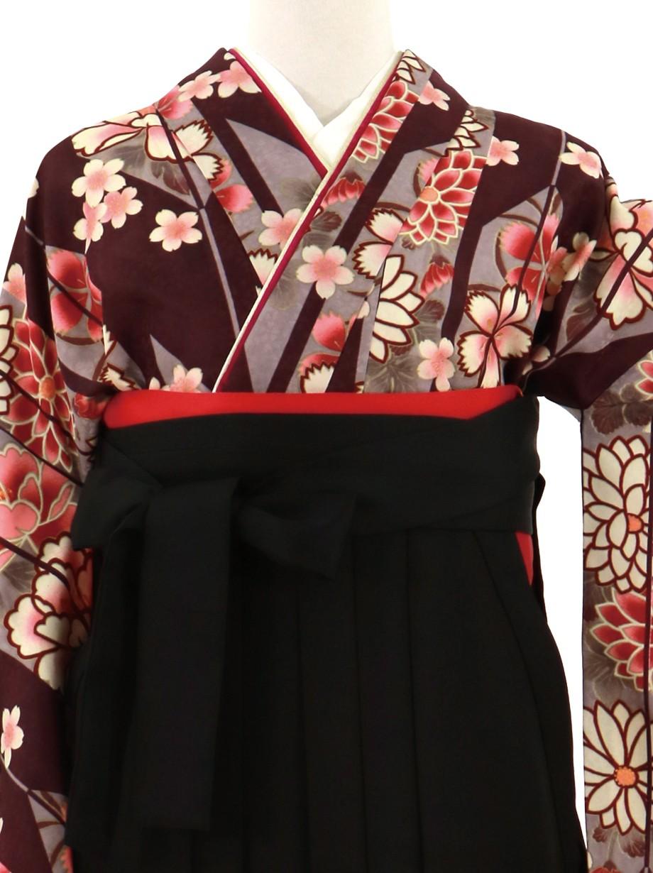 濃紫地に矢絣と桜、黒袴(無地)(二尺袖)/卒業式