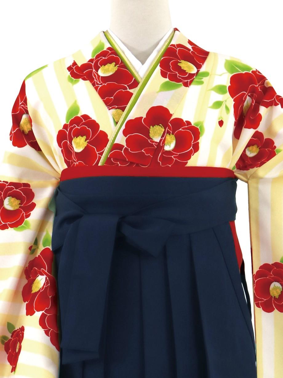 クリームの縞に赤の椿、紺袴(無地)(二尺袖)/卒業式