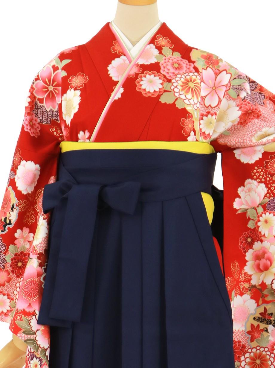 赤地に牡丹と御所車、紺袴(無地)(二尺袖)/卒業式