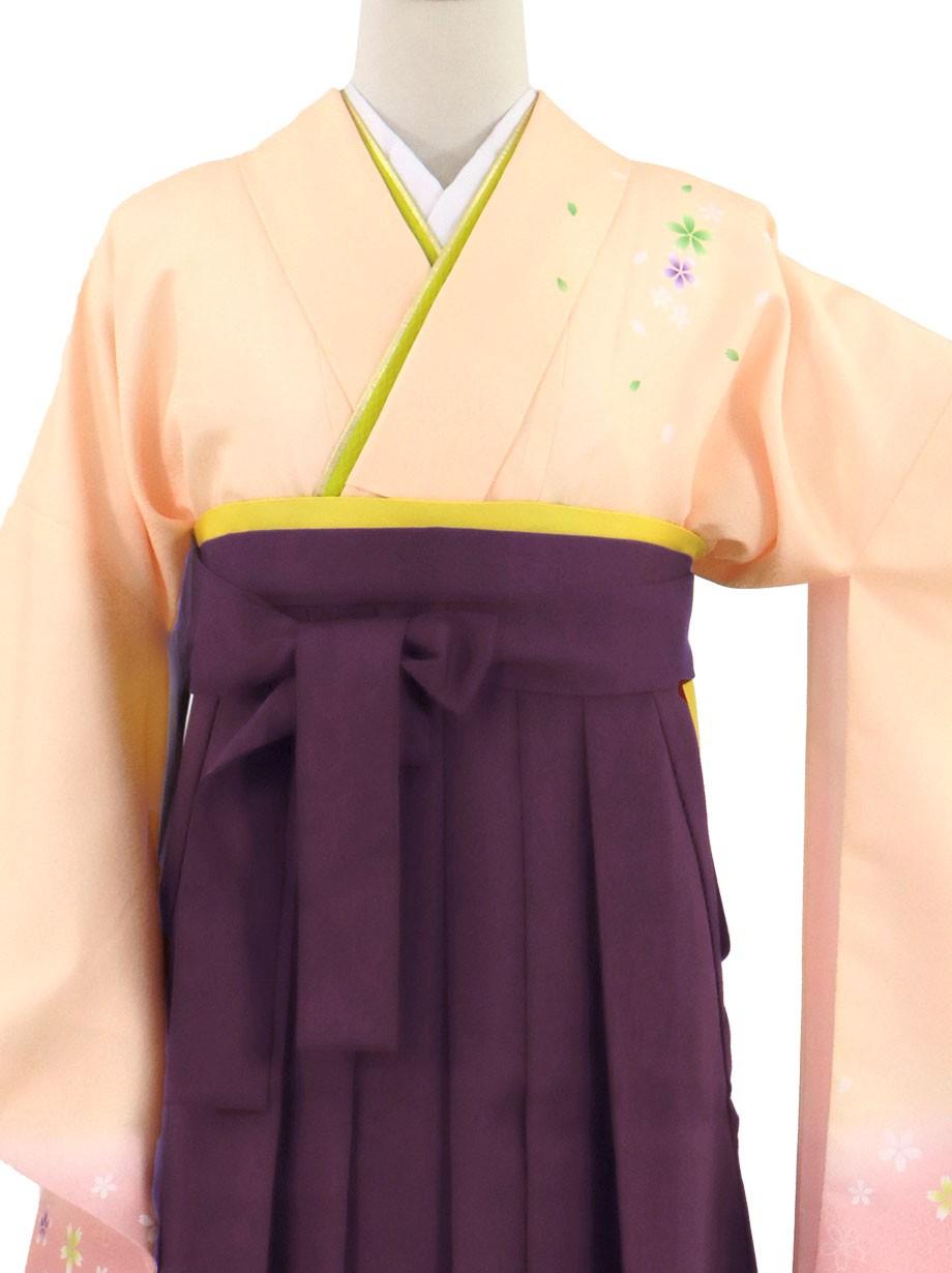 ピンクベージュ地に桜・紫袴(無地)(二尺袖)/卒業式(オリジナルデザイン)
