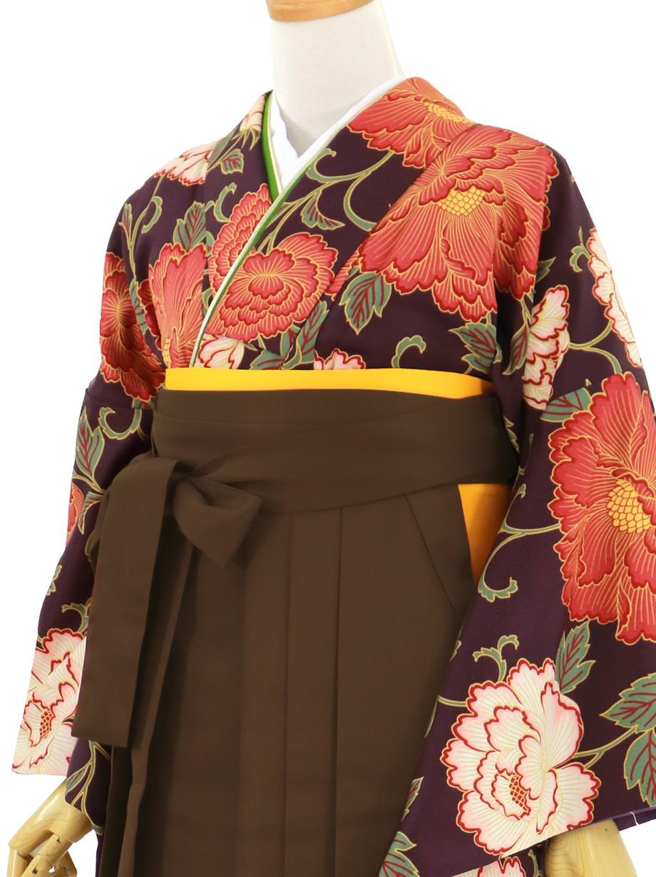 紫地に赤の牡丹、茶色袴(無地)(二尺袖)/卒業式