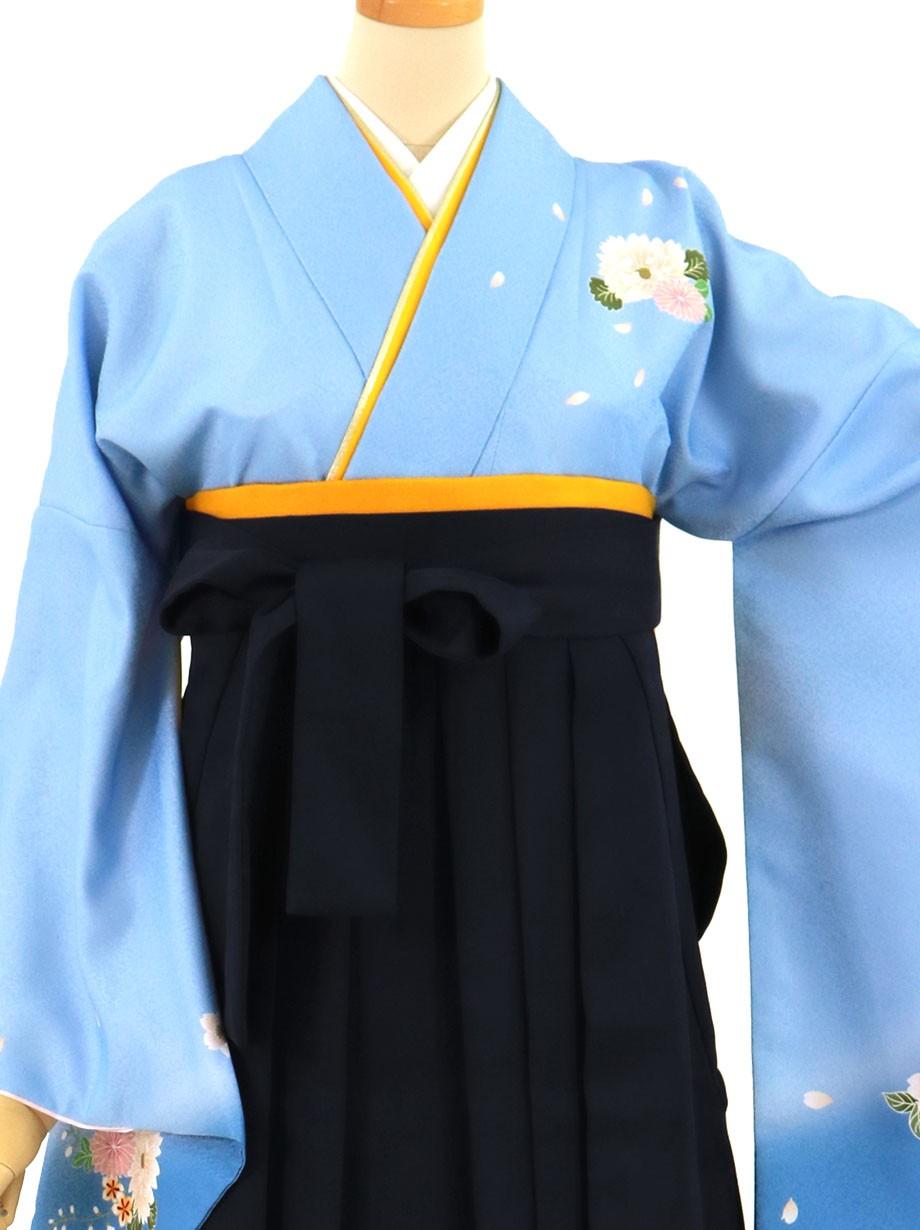 青地に菊・黒袴(無地)(二尺袖)/卒業式(オリジナルデザイン)*
