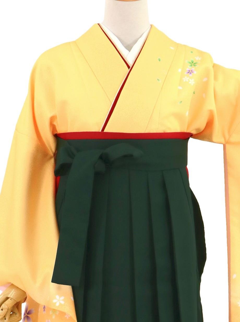 黄色地に桜・深緑袴(無地)(二尺袖)/卒業式(オリジナルデザイン)*