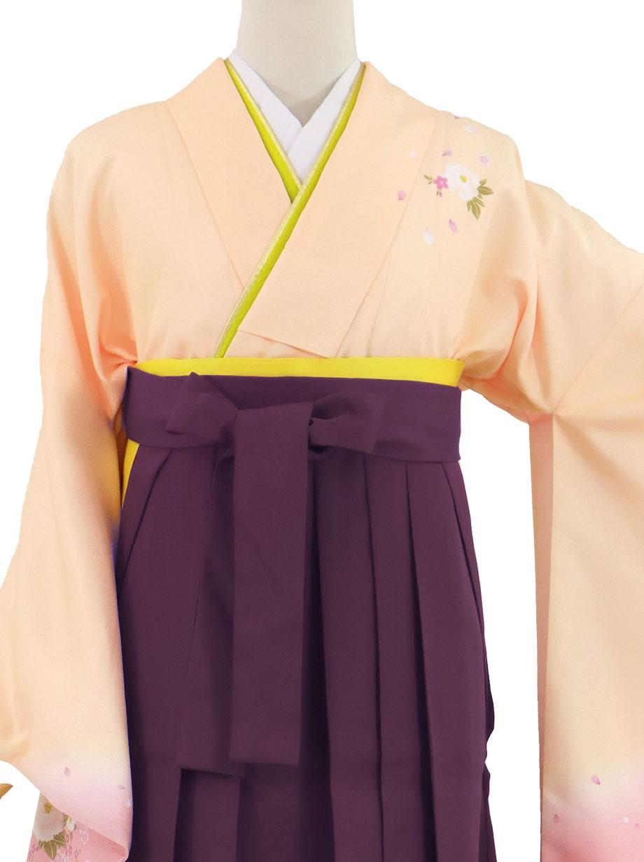 ピンクベージュ地に牡丹・紫袴(無地)(二尺袖)/卒業式(オリジナルデザイン)*
