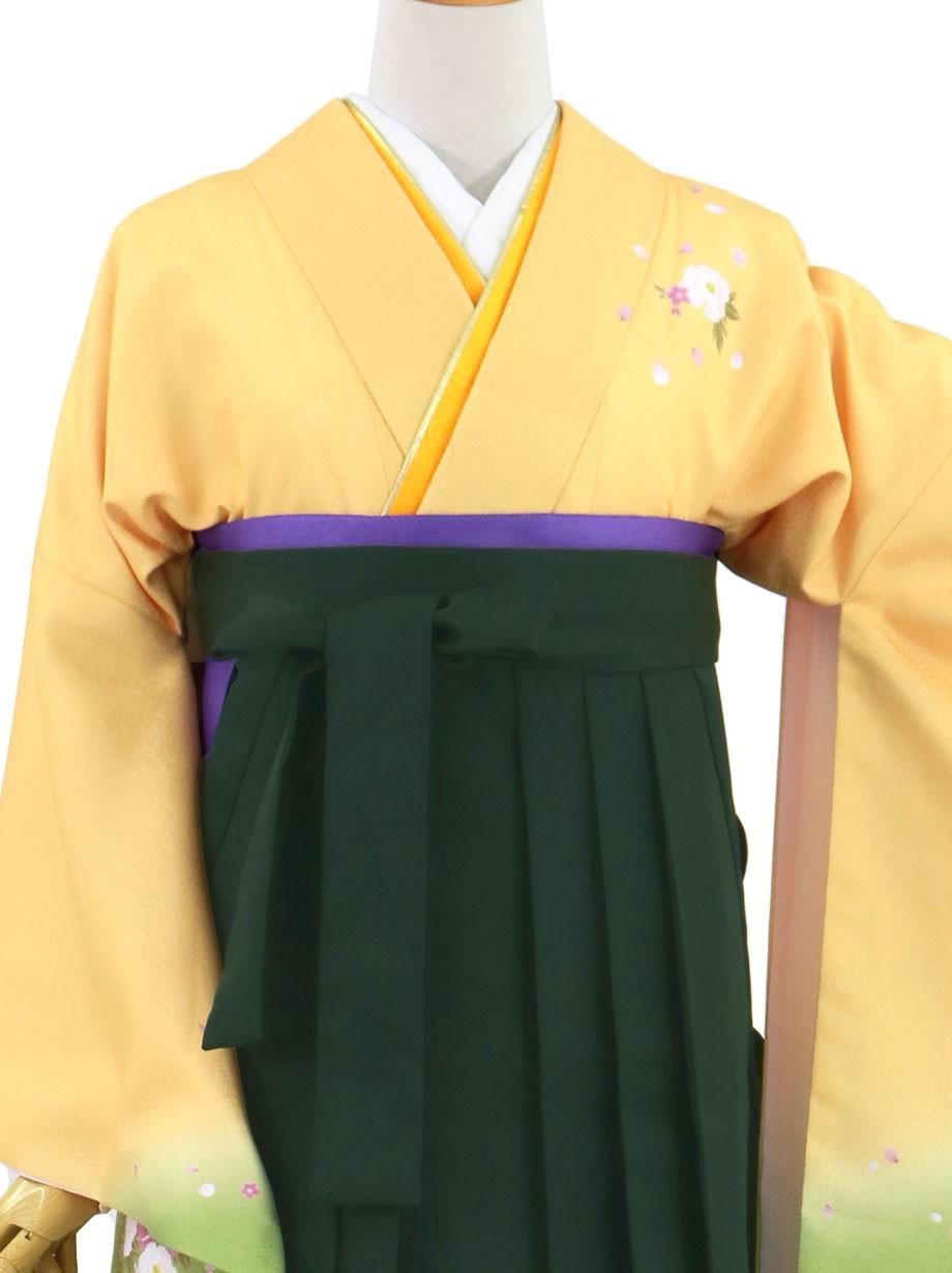 黄色と鶸(ひわ)色地に牡丹・深緑袴(無地)(二尺袖)/卒業式(オリジナルデザイン)*