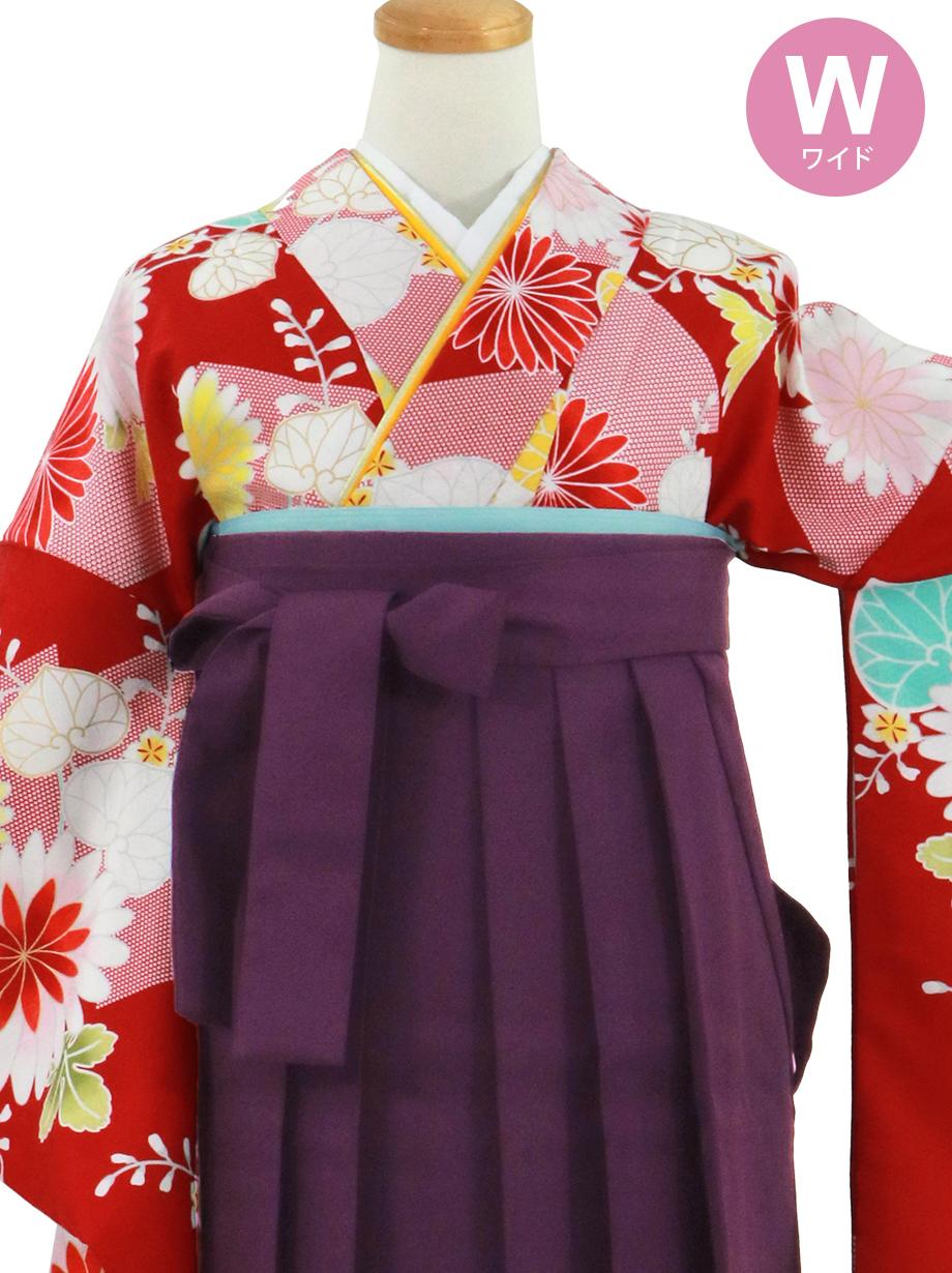赤地に菊と葵、紫袴(無地)(二尺袖)ワイドサイズ/卒業式