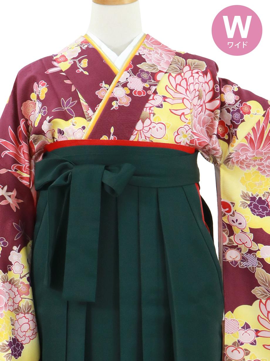紫地に菊と雲取り、深緑袴(無地)(二尺袖)ワイドサイズ/卒業式