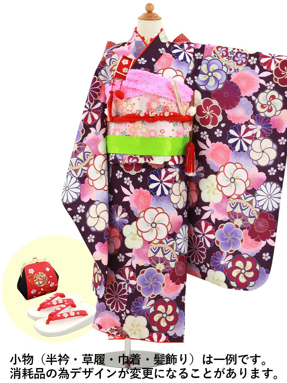 紫色の麻の葉にねじり梅や菊の着物/七五三・七歳女の子