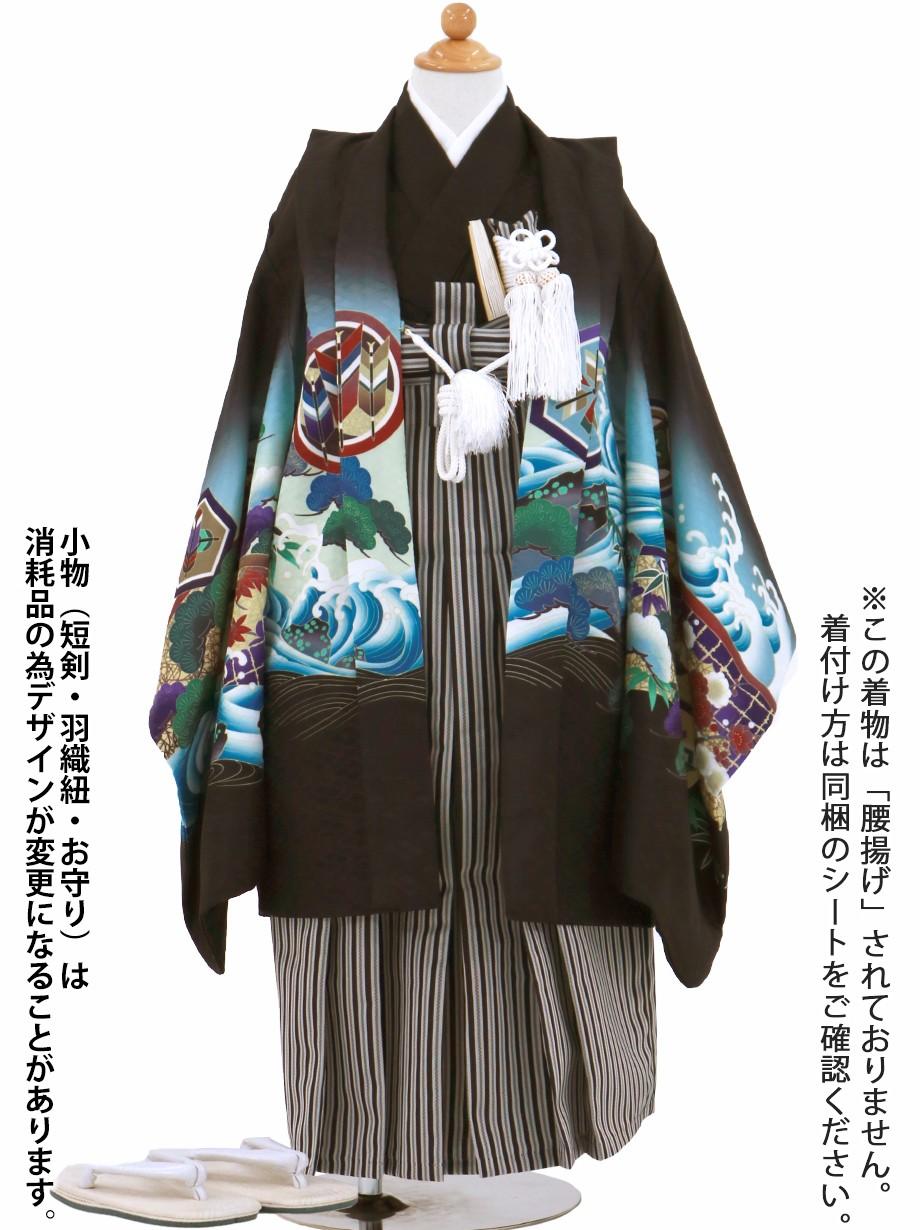黒地に鷹と幔幕、黒縞の袴/七五三・五歳男の子・袴
