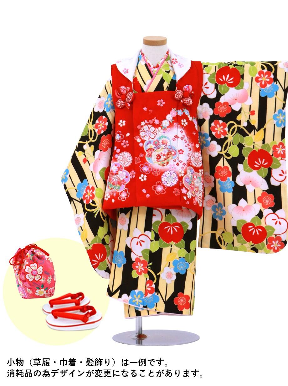 黒地に矢絣の地に橘、赤の桜の被布コートセット/七五三・三歳女の子