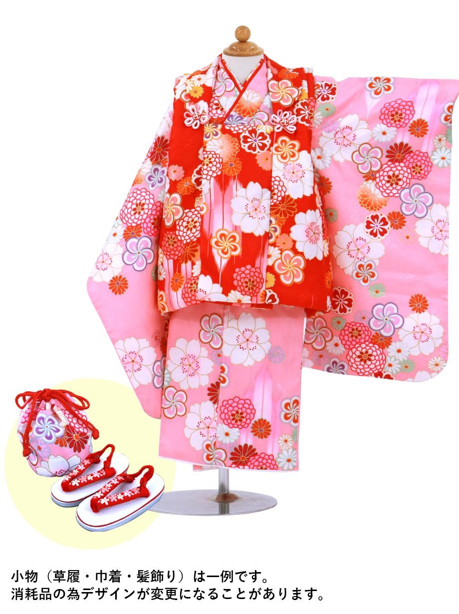 ピンク地に桜と菊、赤の被布コートセット/七五三・三歳女の子