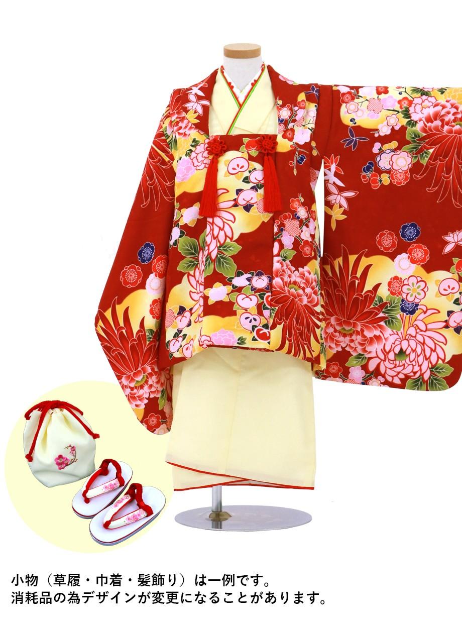 クリームイエローの着物と臙脂に菊の被布コートセット/七五三・三歳女の子