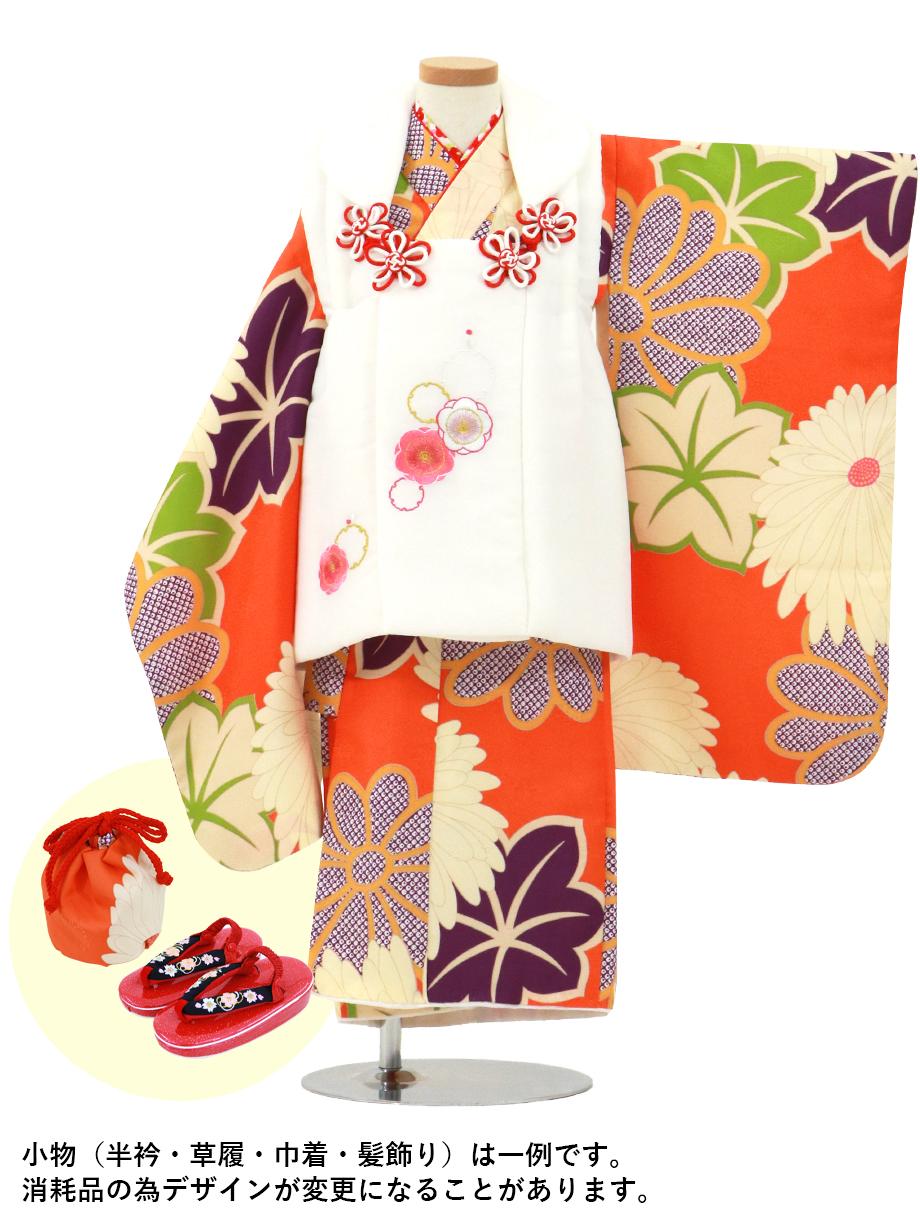 手描き風橙色に菊と紅葉の着物、白の被布コートセット/七五三・三歳女の子