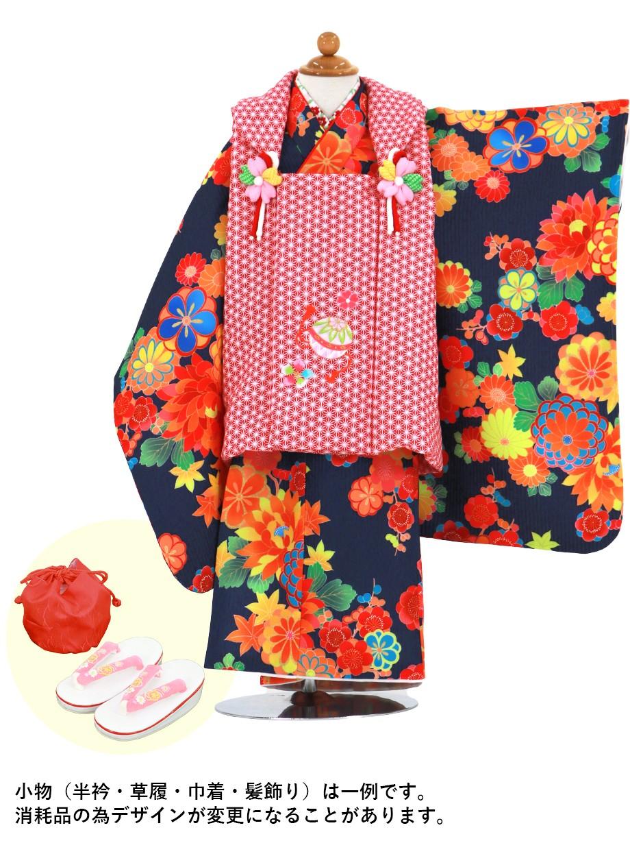 紺地に四季花の着物、赤地の麻の葉の被布コートセット/七五三・三歳女の子