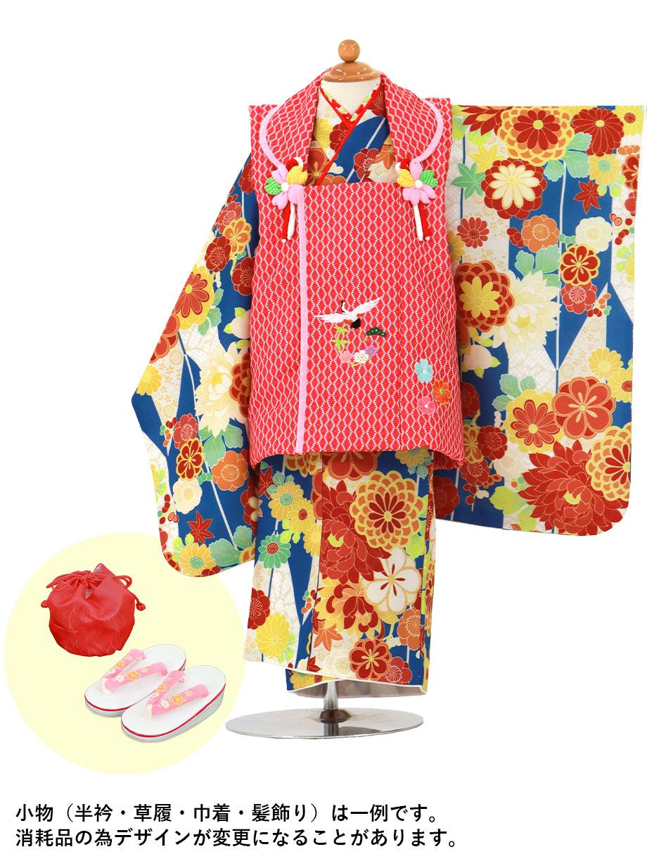 青の矢絣にダリア、赤とピンクの被布コートセット/七五三・三歳女の子