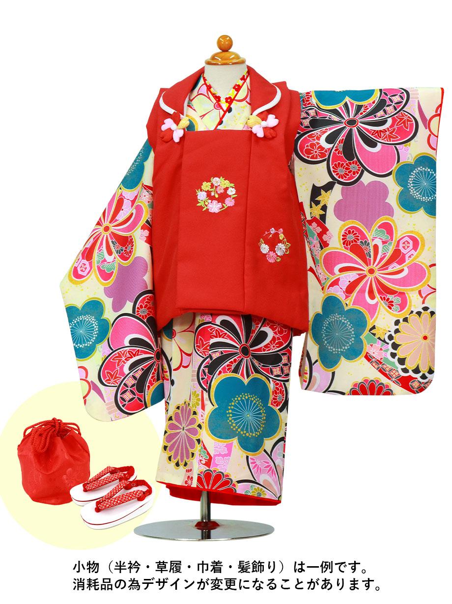 クリーム地にねじり菊と梅、赤の被布コートセット/七五三・三歳女の子