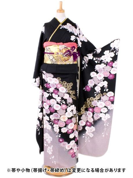 黒地に桜と菊の振袖