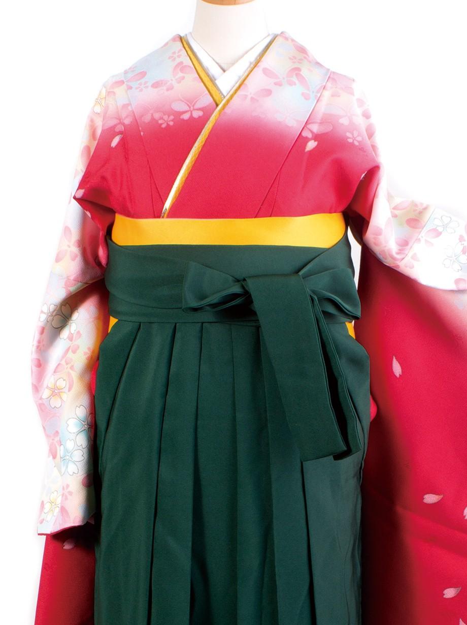 赤色地に蝶と桜・緑袴(二尺袖)/卒業式