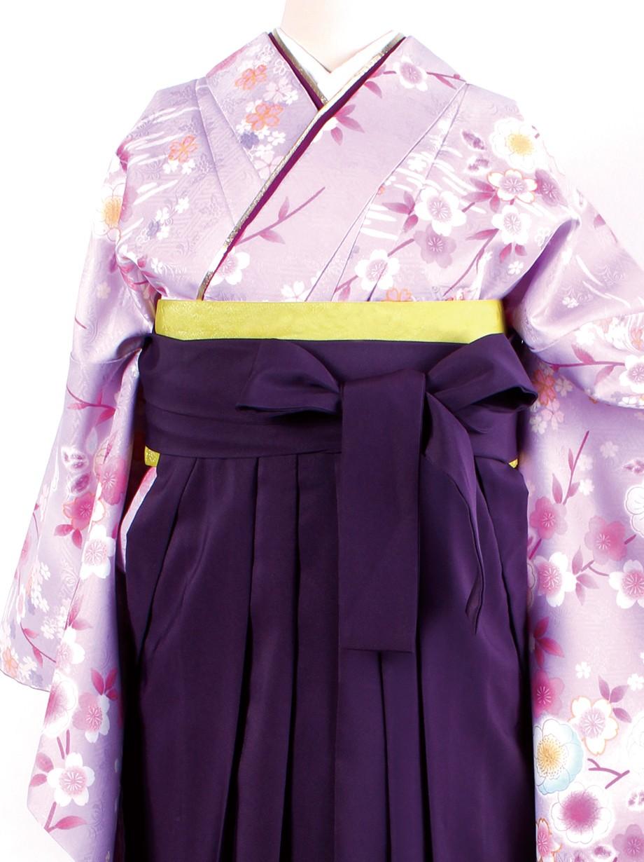 藤色地に桜・紫袴(二尺袖)/卒業式