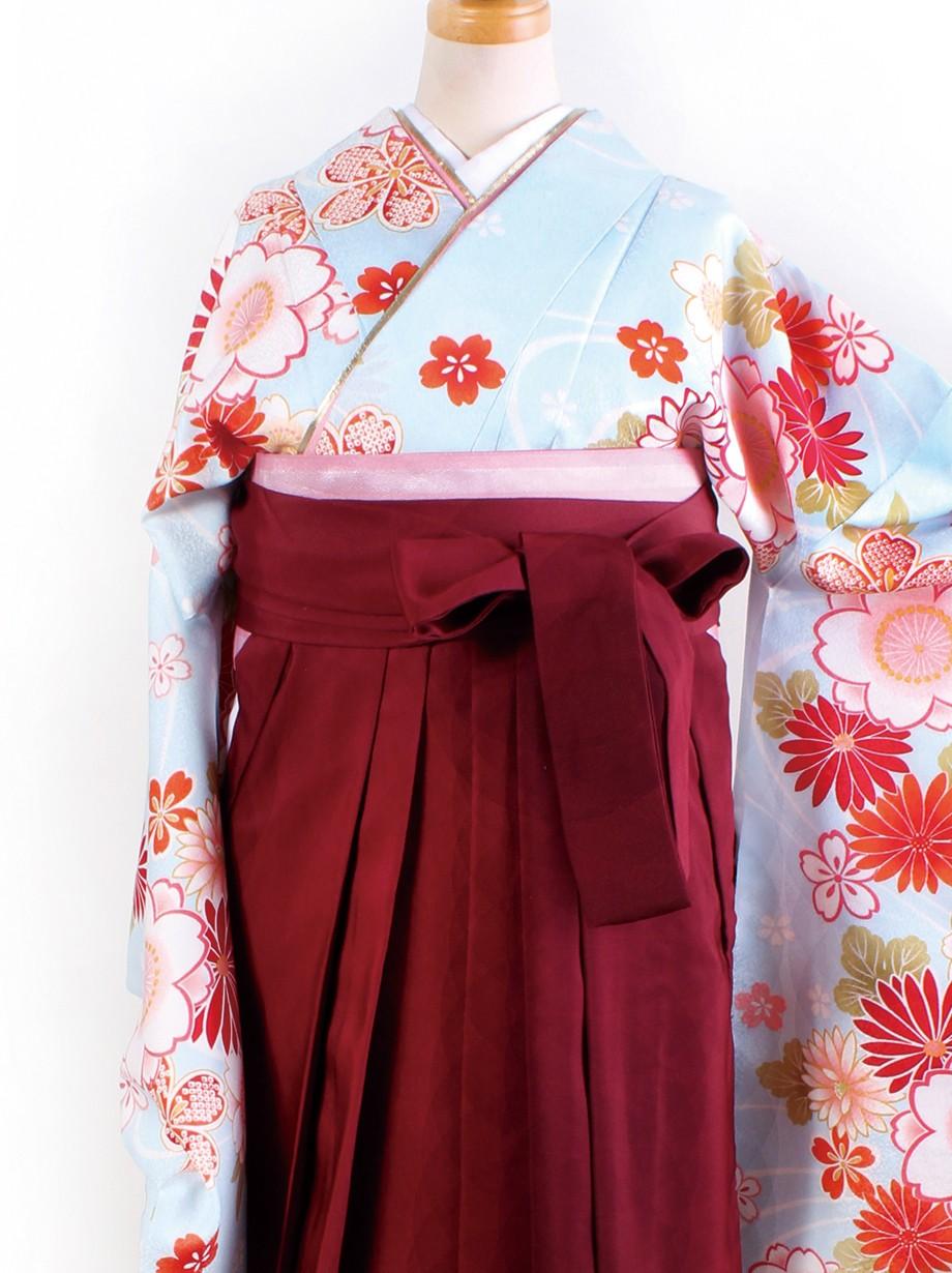 水色地に菊と桜・臙脂袴(二尺袖)/卒業式