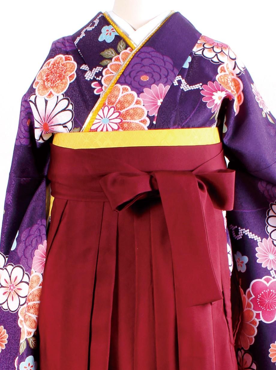 紫色地に菊と桜・臙脂袴(二尺袖)/卒業式