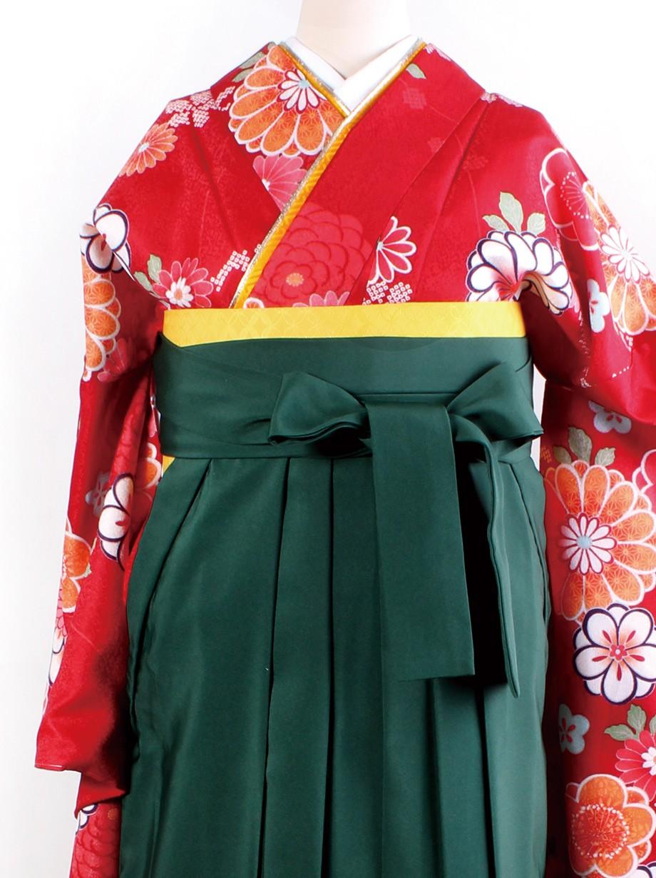 赤地に菊と桜・緑袴(二尺袖)/卒業式