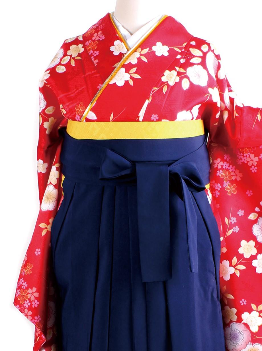 赤地に辻が花風・紺袴(二尺袖)/卒業式