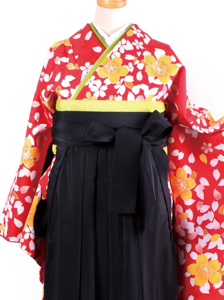 赤地に桜吹雪・黒袴(二尺袖)/卒業式