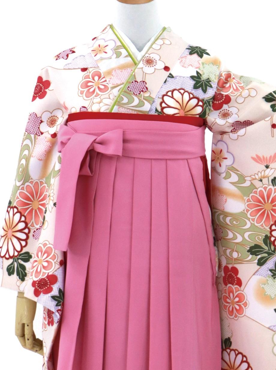 ベージュ地に地紙に菊・ピンク袴(二尺袖)/卒業式