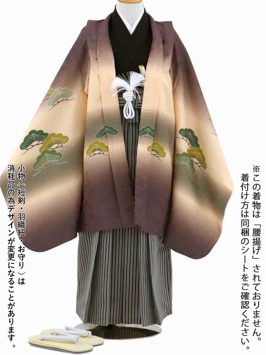 紫鳶(むらさきとび)色に熨斗(のし)と松、黒縞の袴/七五三・五歳男の子・袴